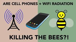 Cell Phone radiation Scams